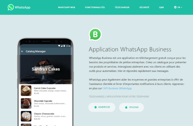 application whatsapp business